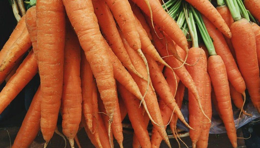 carrots-1082251_640
